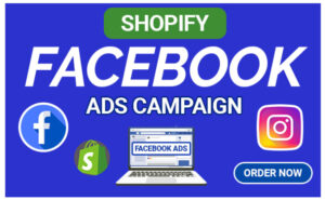 I will setup shopify facebook ads campaing, marketing fb,ig, video ad for shopify store